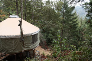 Yurt in a Californian Forest
