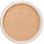 Mineral Foundation - Cookie