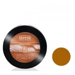 Sun Glow Powder 02 Sun Bronze