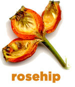 Pure Rosehip Seed Oil is packed with antioxidant vitamins A & E